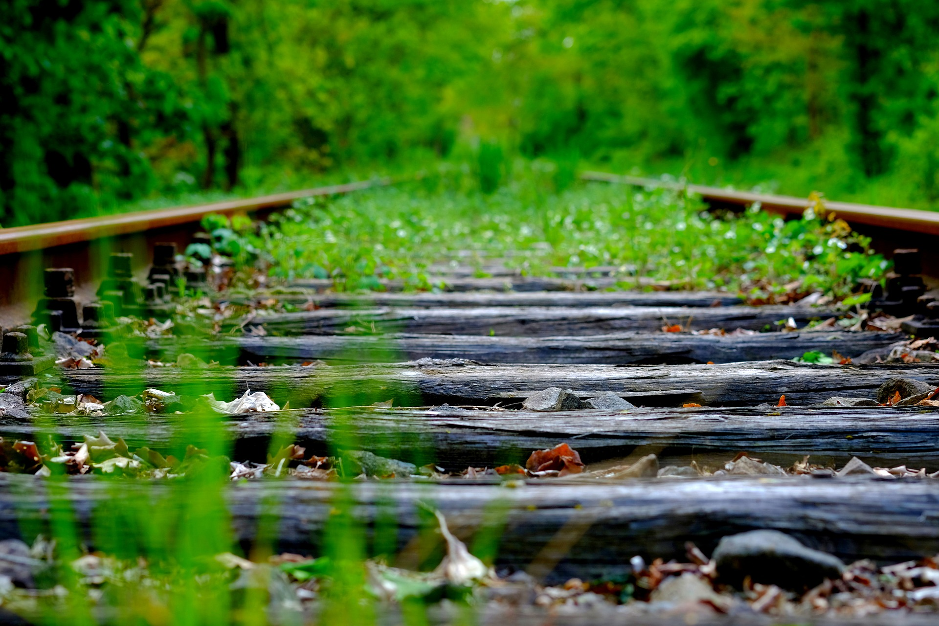 £500m Rail Investment to Reverse Beeching Closures
