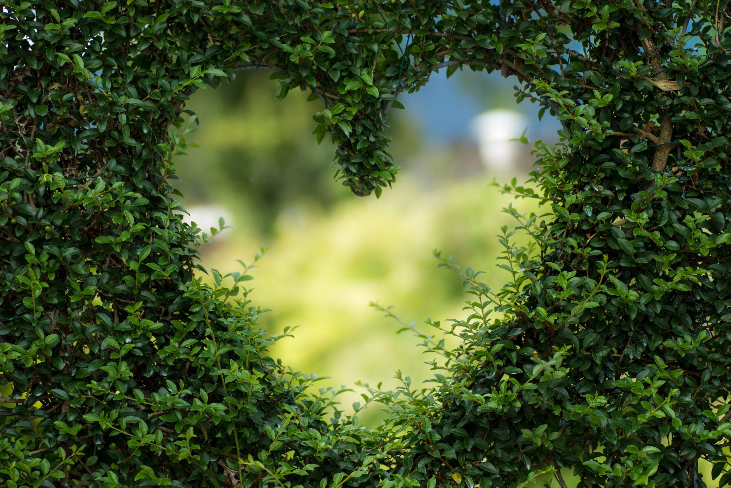 Veolia Environmental Trust Accepting Applications