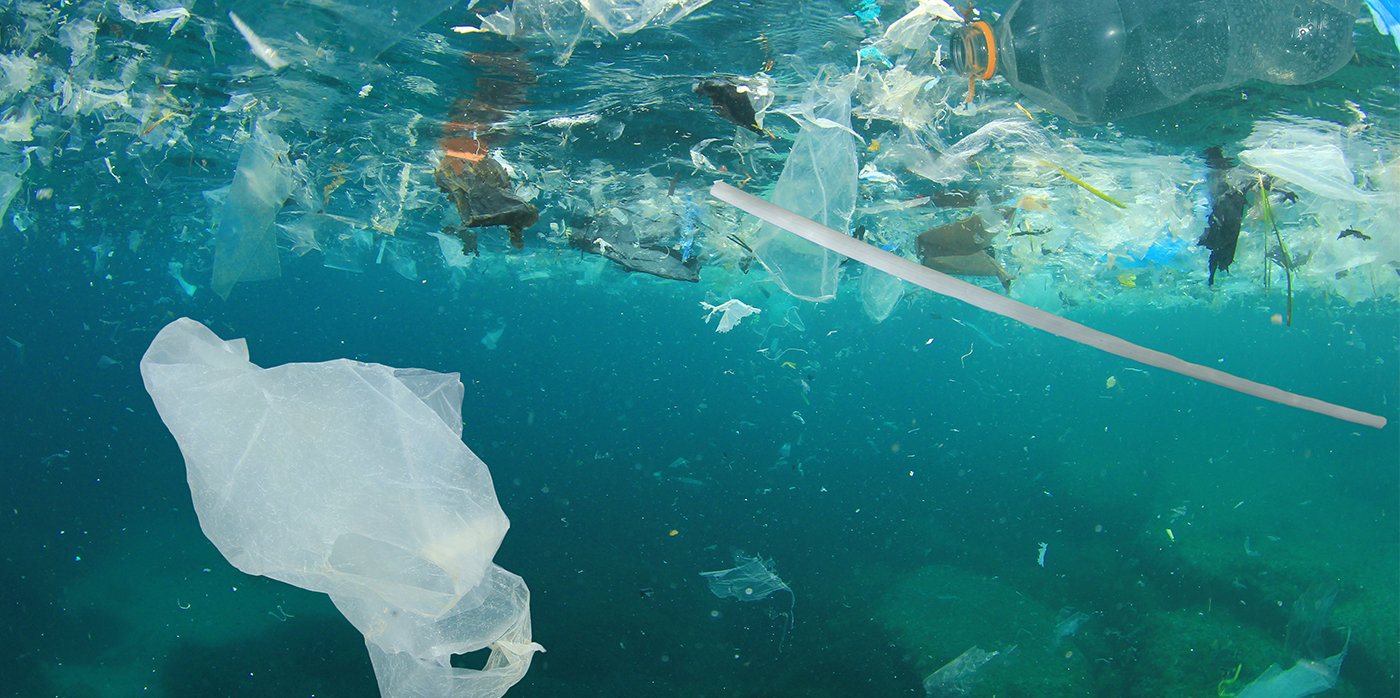 Plastic bag and litter in the sea